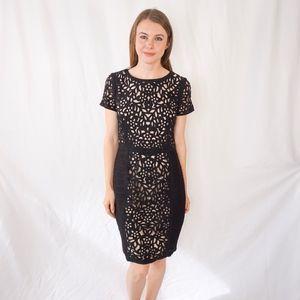 Maeve Laser Cut Basalt Sheath Black Dress Anthro 6